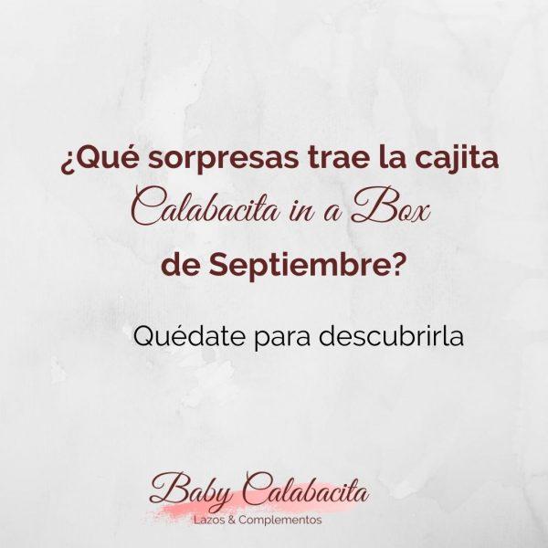 Calabacita in a Box Septiembre '20